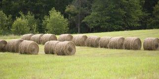 O feno rola em um pasto dos fazendeiros Fotos de Stock
