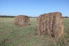 O feno rola o encontro em um campo de inclinação no outono Fotos de Stock Royalty Free