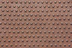 O ferro oxidado moldou o painel coberto com o teste padrão de estrelas cinco-aguçado Fotografia de Stock Royalty Free