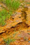 O ferro saturou a angra em uma área da mineração Fotos de Stock