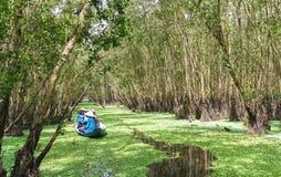 O ferryman toma o viajante em uma excursão do barco ao longo dos canais na floresta dos manguezais imagem de stock
