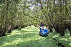 O ferryman toma o viajante em uma excursão do barco ao longo dos canais na floresta dos manguezais imagem de stock royalty free