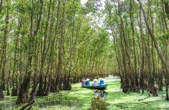 O ferryman toma o viajante em uma excursão do barco ao longo dos canais na floresta dos manguezais fotos de stock royalty free