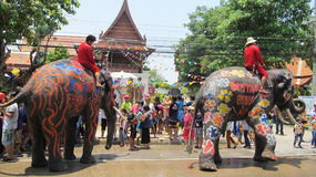 O festival de Songkran é comemorado com os elefantes em Ayutthaya Foto de Stock