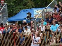 2016 o festival medieval 1 Fotos de Stock