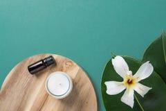 O ficus grande bonito deixa a flor tropical o fundo de madeira do verde da placa da vela da garrafa de óleo essencial Termas orgâ imagens de stock