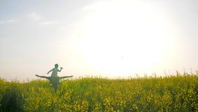 O filho senta-se em ombros gena no prado bonito no dia ensolarado, paizinho com o avião do jogo do menino em flores do campo do f video estoque