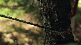 O fim acima da madeira do corte do homem com uma mão considerou filme