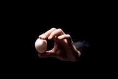 O fim acima de equipa a mão que guarda um ovo foto de stock