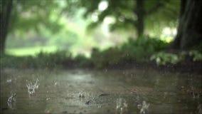 O fim constante maravilhoso acima de movimento lento satisfying disparou das gotas da chuva da chuva torrencial que caem na estra video estoque
