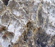O fim detalhado acima dos tiros da textura das montanhas do cal surge em Alemanha do norte imagens de stock