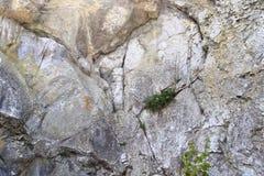 O fim detalhado acima dos tiros da textura das montanhas do cal surge em Alemanha do norte fotos de stock