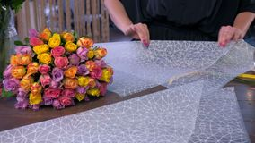 O florista da mulher está empacotando o ramalhete das rosas no papel do ofício no florista filme