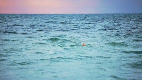 O flutuador alaranjado da boia flutua no mar overcast video estoque
