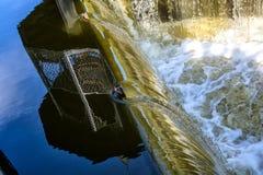 O fluxo da água imagem de stock
