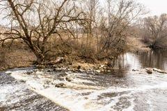 O fluxo da água com a reflexão das árvores, de um rio com pedras e de árvores sem folha, dia nebuloso na mola adiantada imagem de stock