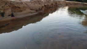 O fluxo do enchimento da água considera os peixes foto de stock