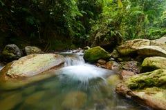 O fluxo do rio fotografia de stock