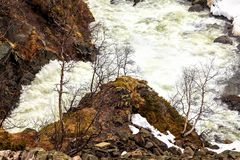 O fluxo rápido da cachoeira de Voringfossen, Noruega Imagens de Stock