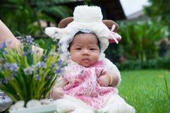 O foco no bebê recém-nascido asiático com os carneiros pequenos dos trajes no jardim e na mãe está guardando-a Imagens de Stock Royalty Free