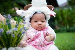 O foco no bebê recém-nascido asiático com os carneiros pequenos dos trajes no jardim e na mãe está guardando-a Foto de Stock Royalty Free