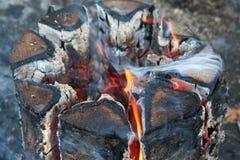 O fogo Imagem de Stock Royalty Free