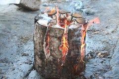 O fogo Fotos de Stock Royalty Free