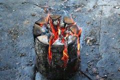O fogo Imagem de Stock