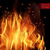 O fogo abstrato arde o fundo do vetor Fogo quente da ilustração Fotos de Stock