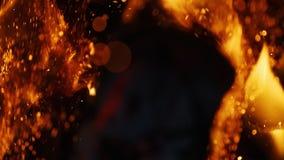 O fogo acende movendo sobre a obscuridade no fundo preto que vem brilhantemente da queimadura morno video estoque