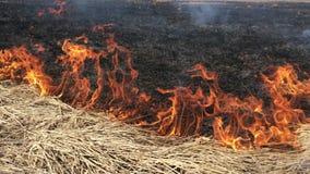 O fogo alarga-se acima perigosamente video estoque