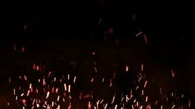 O fogo bonito acende na noite, fundo escuro Animação do laço vídeos de arquivo
