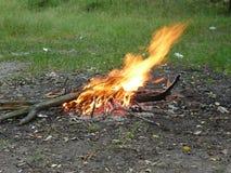 O fogo, chama, acende imagens de stock royalty free