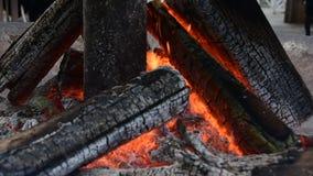 O fogo de madeira ardente video estoque