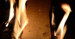 O fogo de queimadura fez da madeira video estoque