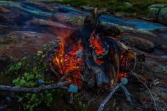 O fogo do acampamento Imagem de Stock