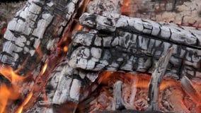 O fogo do de madeira entra a chaminé filme