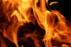 O fogo e as chamas de carvões Imagem de Stock Royalty Free
