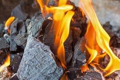 O fogo e os carvões fecham-se acima Chamas brilhantes do fogo ardente Imagem de Stock