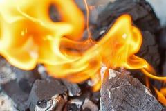 O fogo e os carvões fecham-se acima Chamas brilhantes do fogo ardente Fotografia de Stock