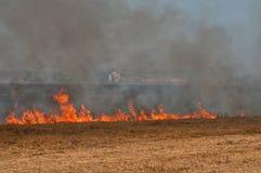 O fogo no campo Imagens de Stock