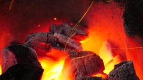 O fogo no fogão está quente vídeos de arquivo