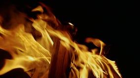 O fogo queima-se na escuridão video estoque