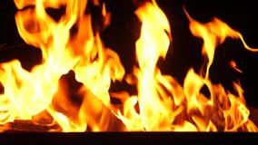 O fogo queima-se na grade na noite, faíscas vermelhas da mosca à parte superior, movimento lento do fogo, fim acima video estoque