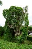 O formulário da árvore de elefante Fotografia de Stock