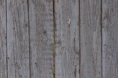 O forro de madeira velho embarca a parede Foto de Stock