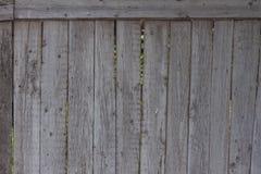 O forro de madeira velho embarca a parede Fotografia de Stock Royalty Free