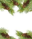 O frame do Natal fêz filiais do abeto do ââof Imagem de Stock