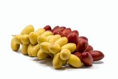 O fruto amarelo fresco da data e a data vermelha fresca frutificam no fundo branco Fotos de Stock Royalty Free