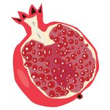 O fruto da romã parte-se ao meio isolado no fundo branco ilustração do vetor